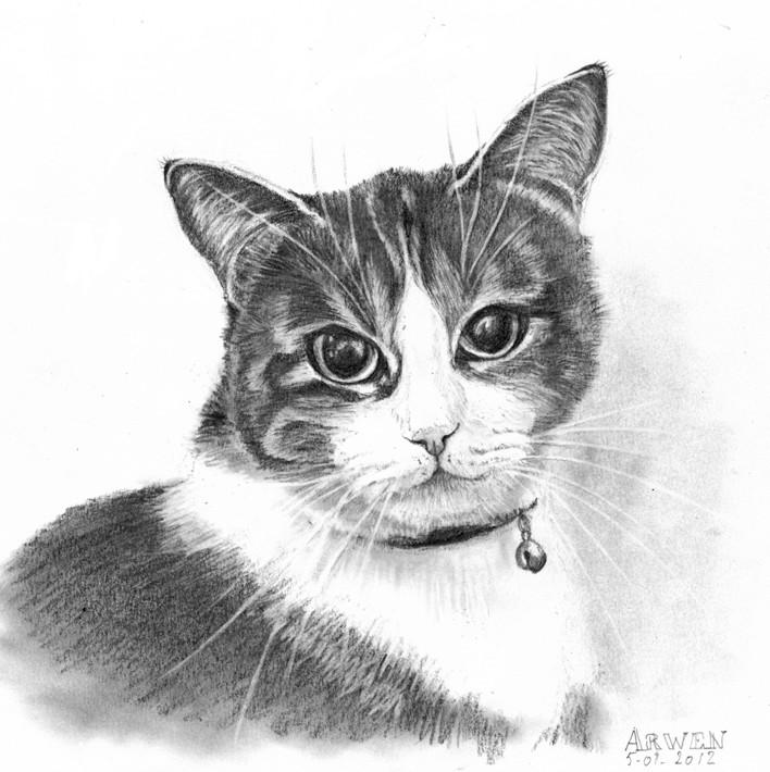 Premiers dessins les animaux dessin ou peinture - Dessins de chat ...