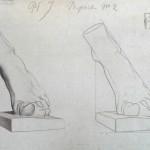 apprendre à dessiner un pied de profil