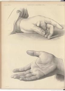 dessin d'étude d'une main posée et d'une main ouverte