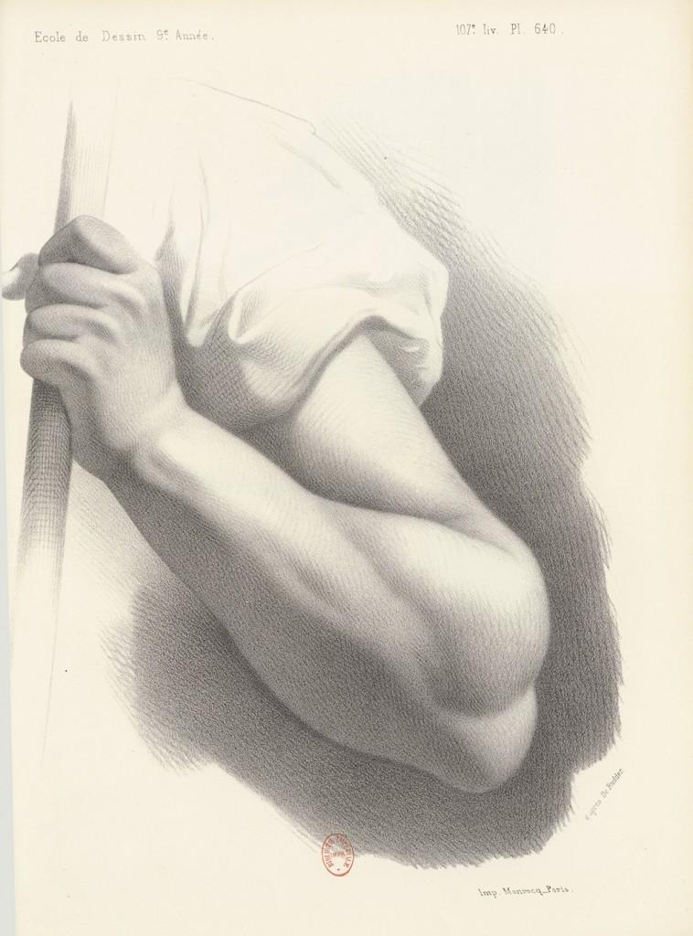 dessin d'étude d'un bras et d'une main tenant un bâton