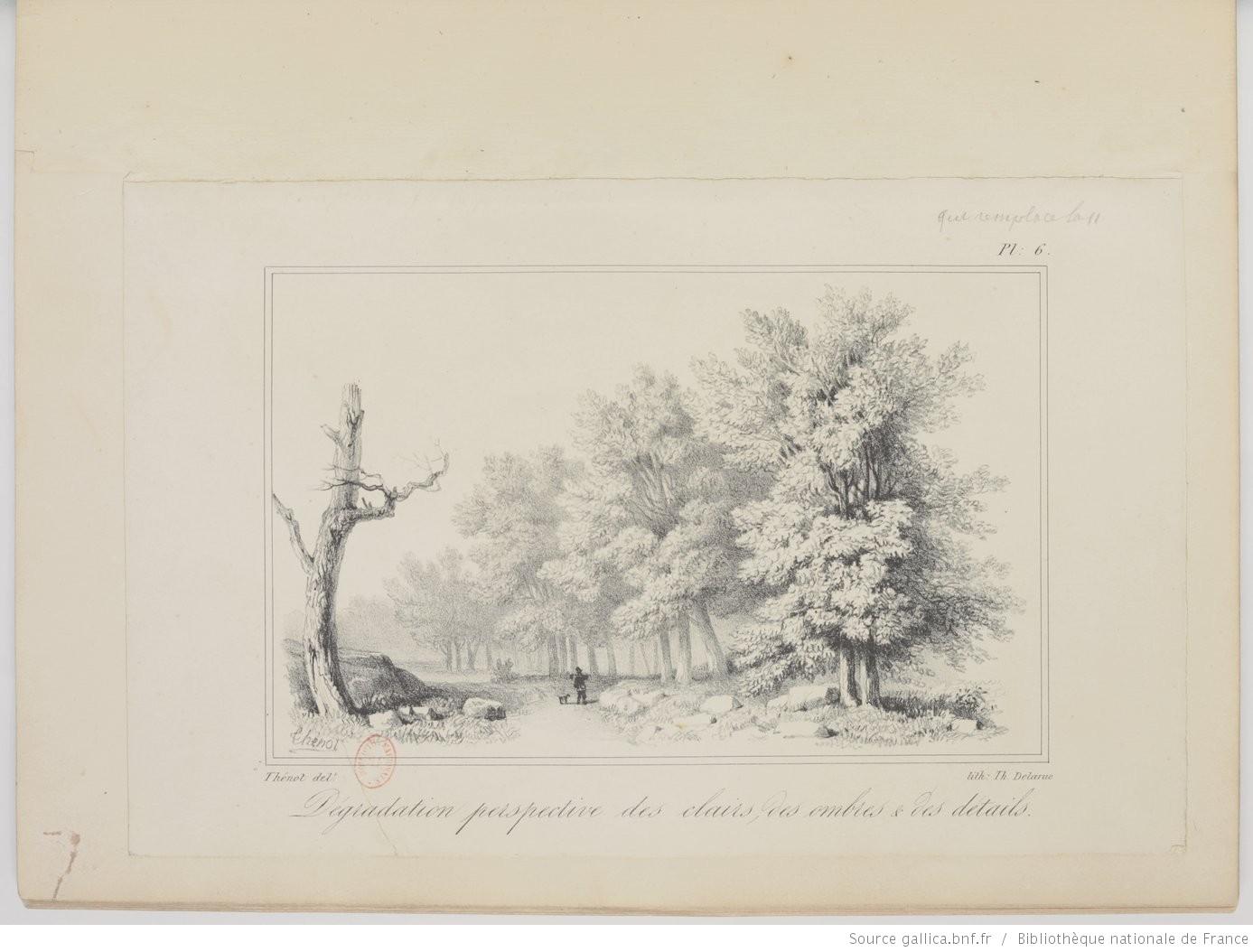 dessiner une haies d'arbres
