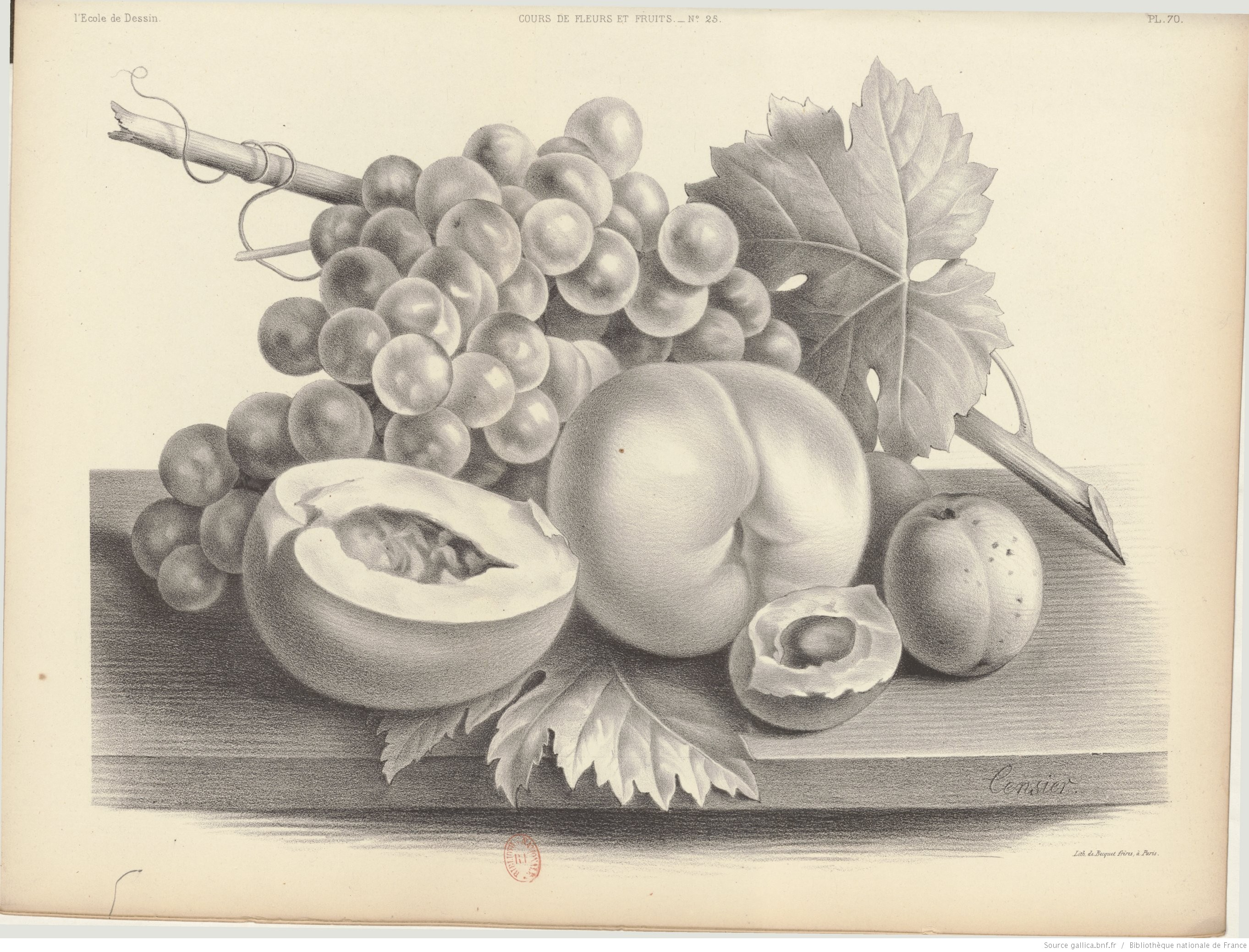 Nature morte de fruits dessin ou peinture - Dessin de nature morte ...