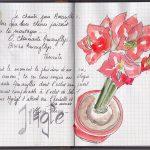 croquis aquarellé de fleurs
