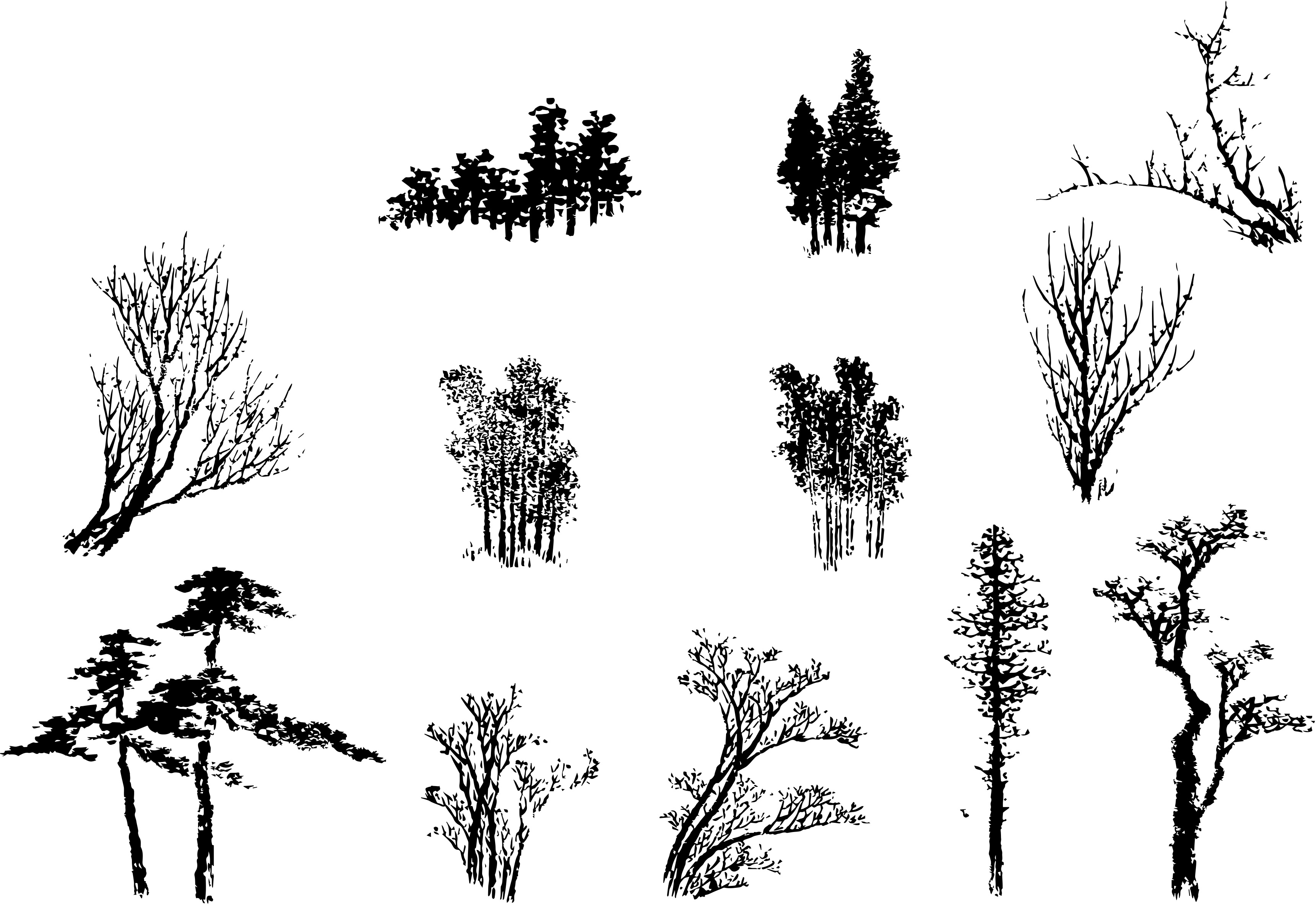 Arbres et branches tirés d'estampes d'Hokusai