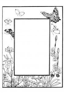 decor avec plantes et papillons