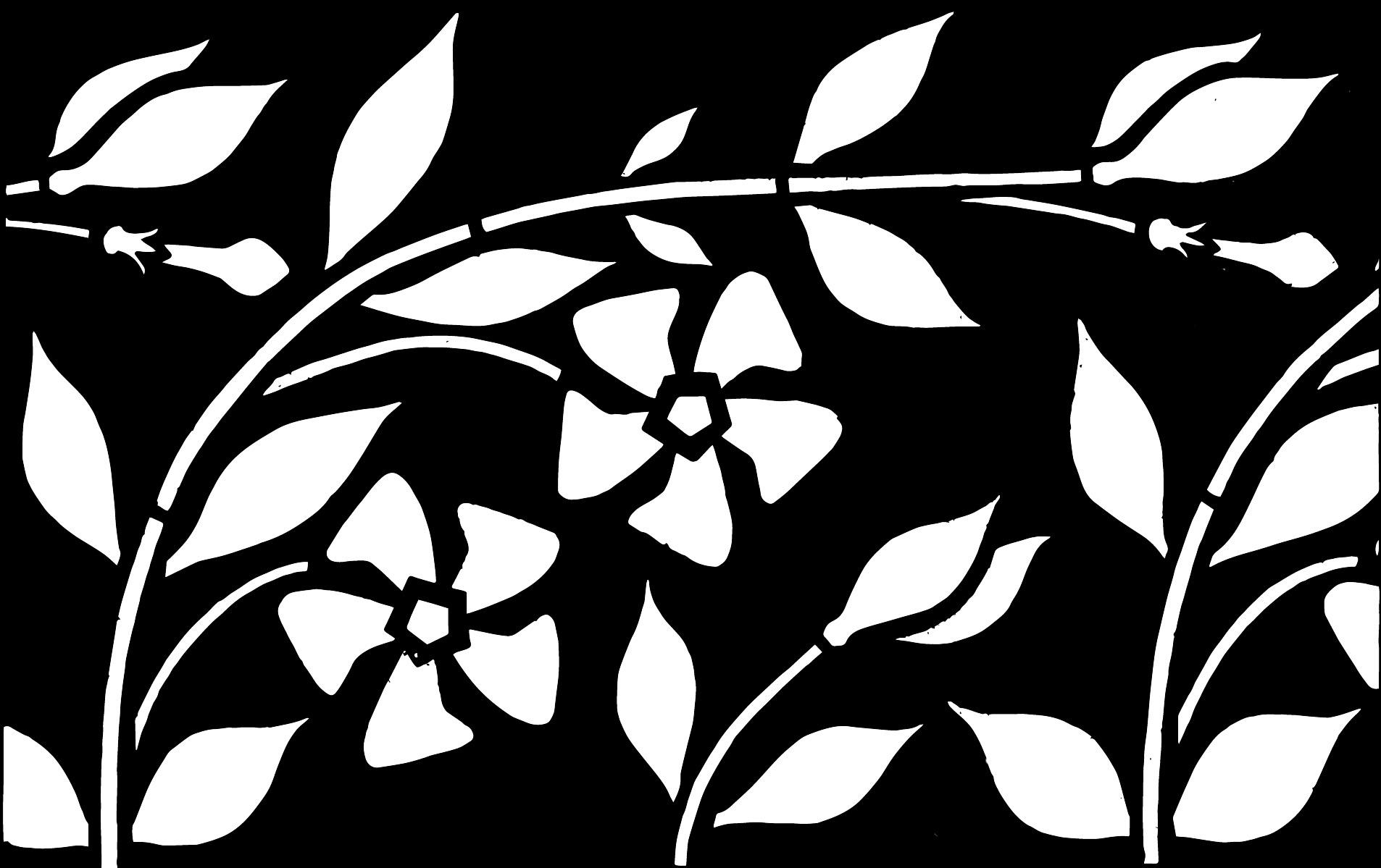 version noir et blanc