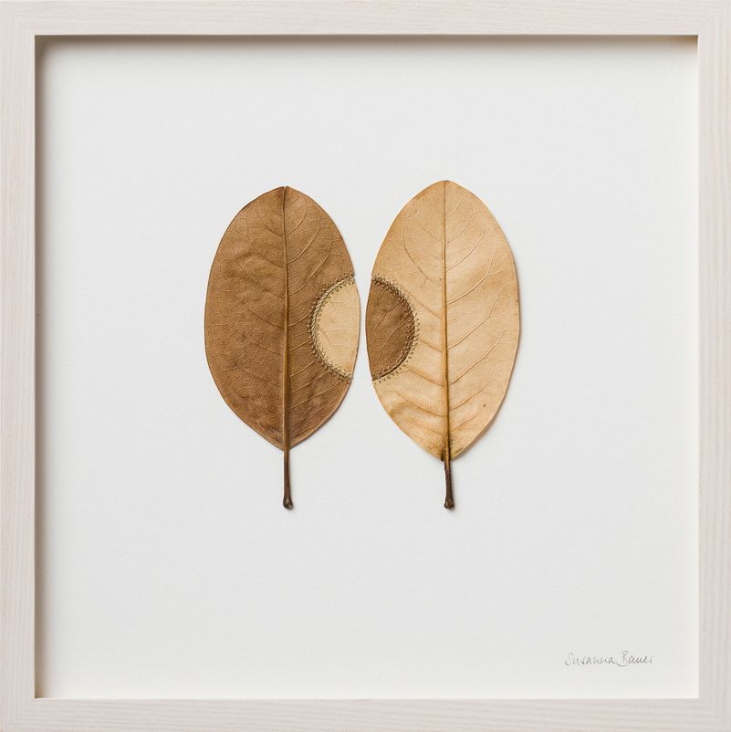 Les-Feuilles-embellies-au-Crochet-par-Susanna-Bauer-09