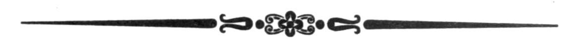 motif-typo17a