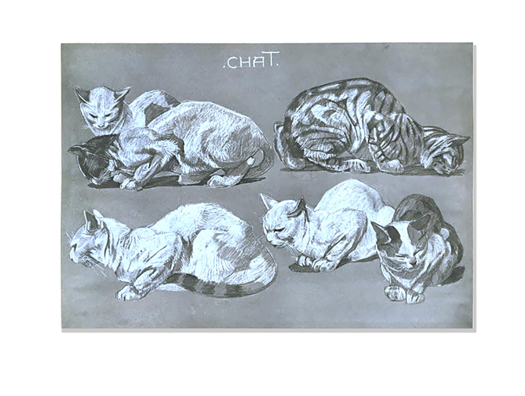 Chat -Études d'animaux, de Méheut, Mathurin, 1882-1958 (Artist) - The Digital Public Library of America-NYPL catalog ID (B-number): b13983745