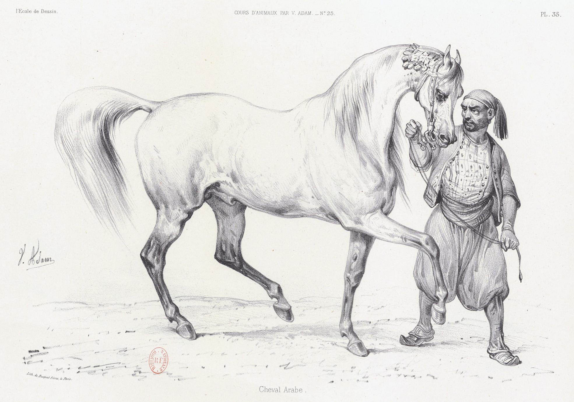 Album de l'École de dessin de 1825, journal des jeunes artistes et des amateurs - étude d'animaux
