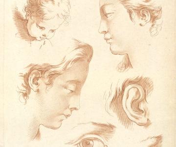 dessins de tête, profils et détails