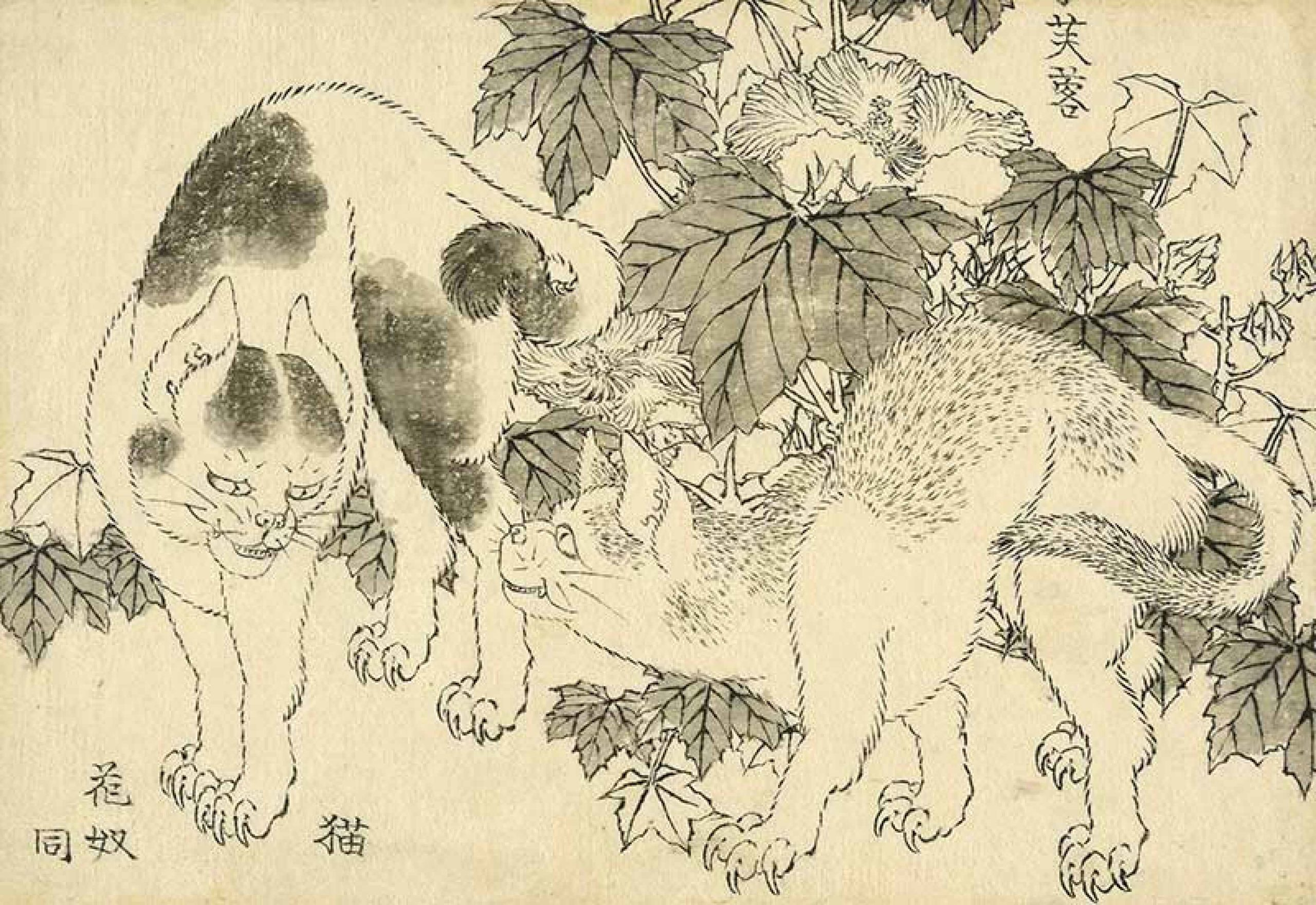 hokusai-chats-et-hibiscus-1829-c-the-trustees-of-the-british-museum-arts-in-the-city-3200×0-1