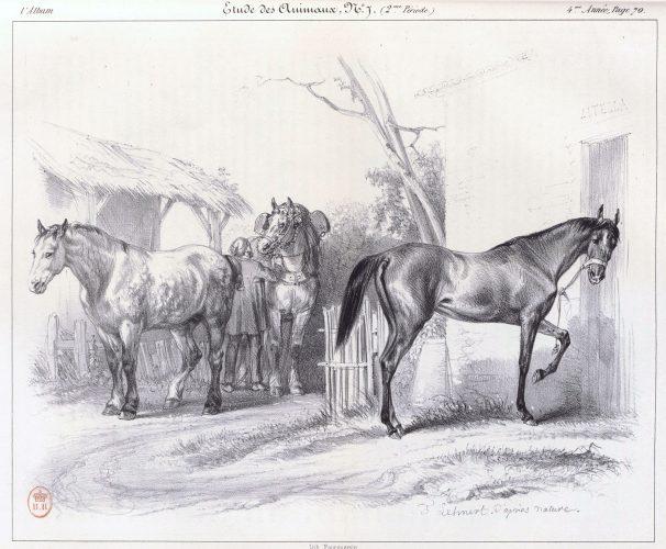 Etude de chevaux parue dans L'Album de mai 1843